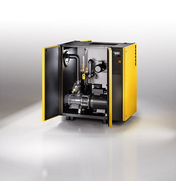 Schraubenkompressor